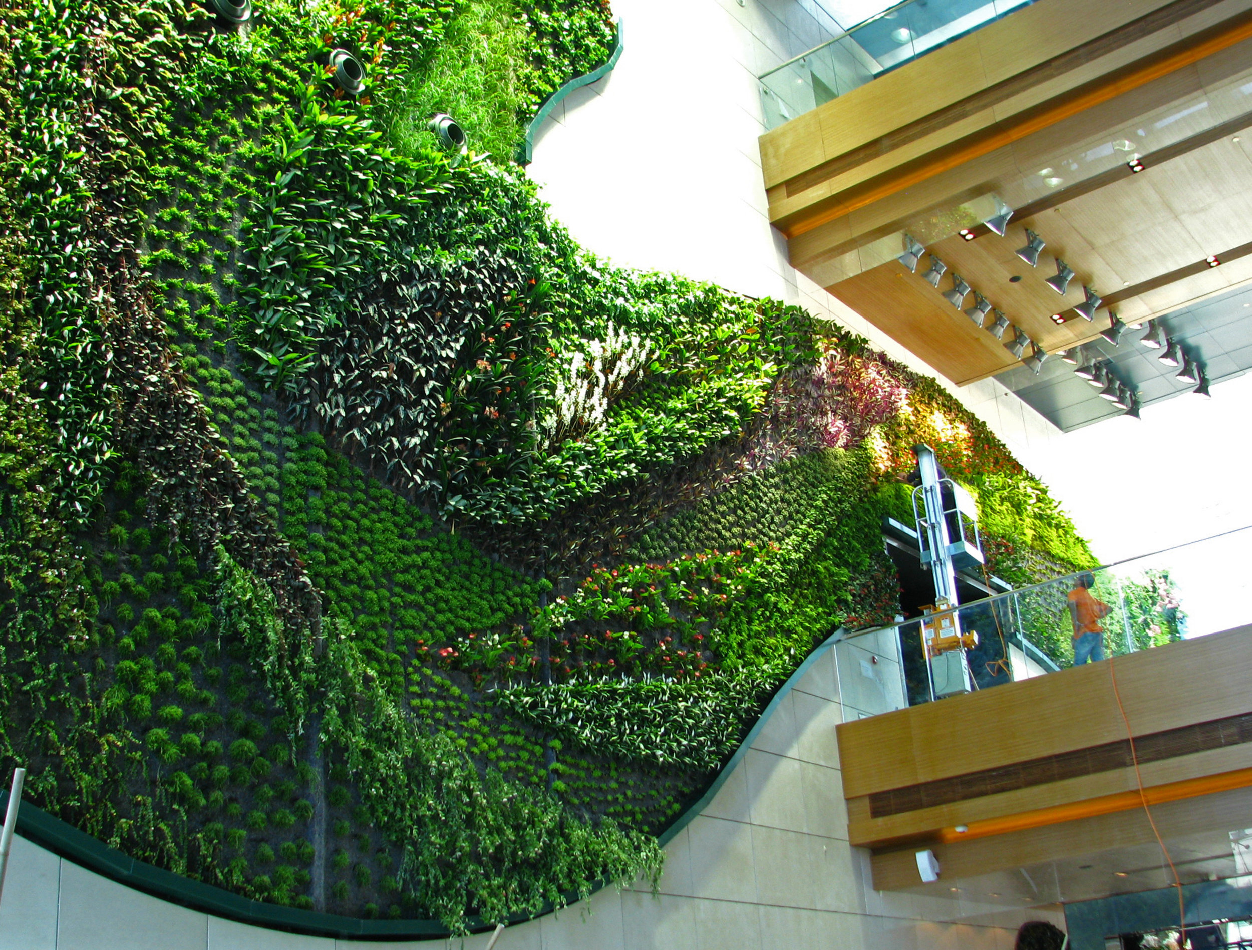 Thousand plants in the lobby!