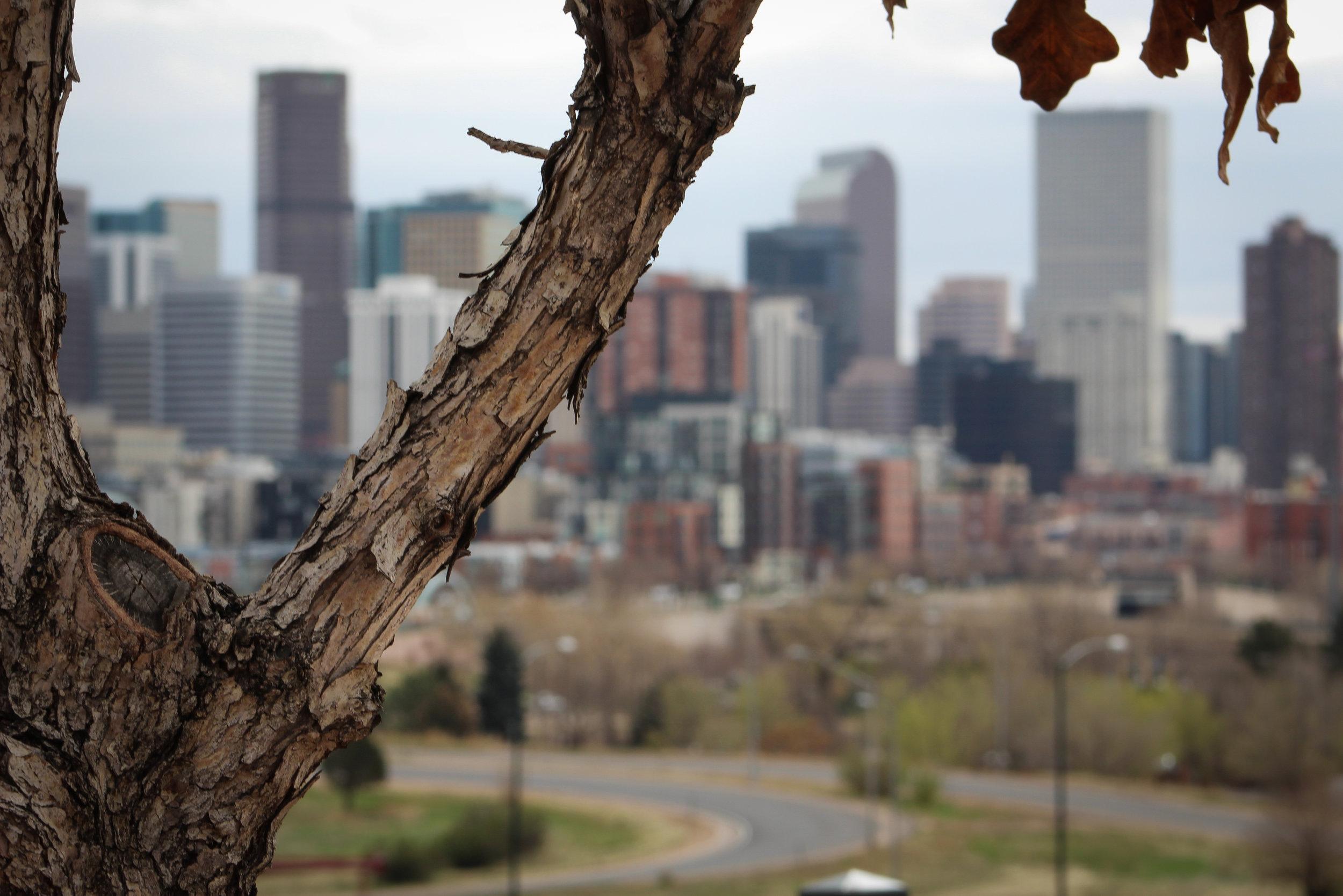 Denver by day