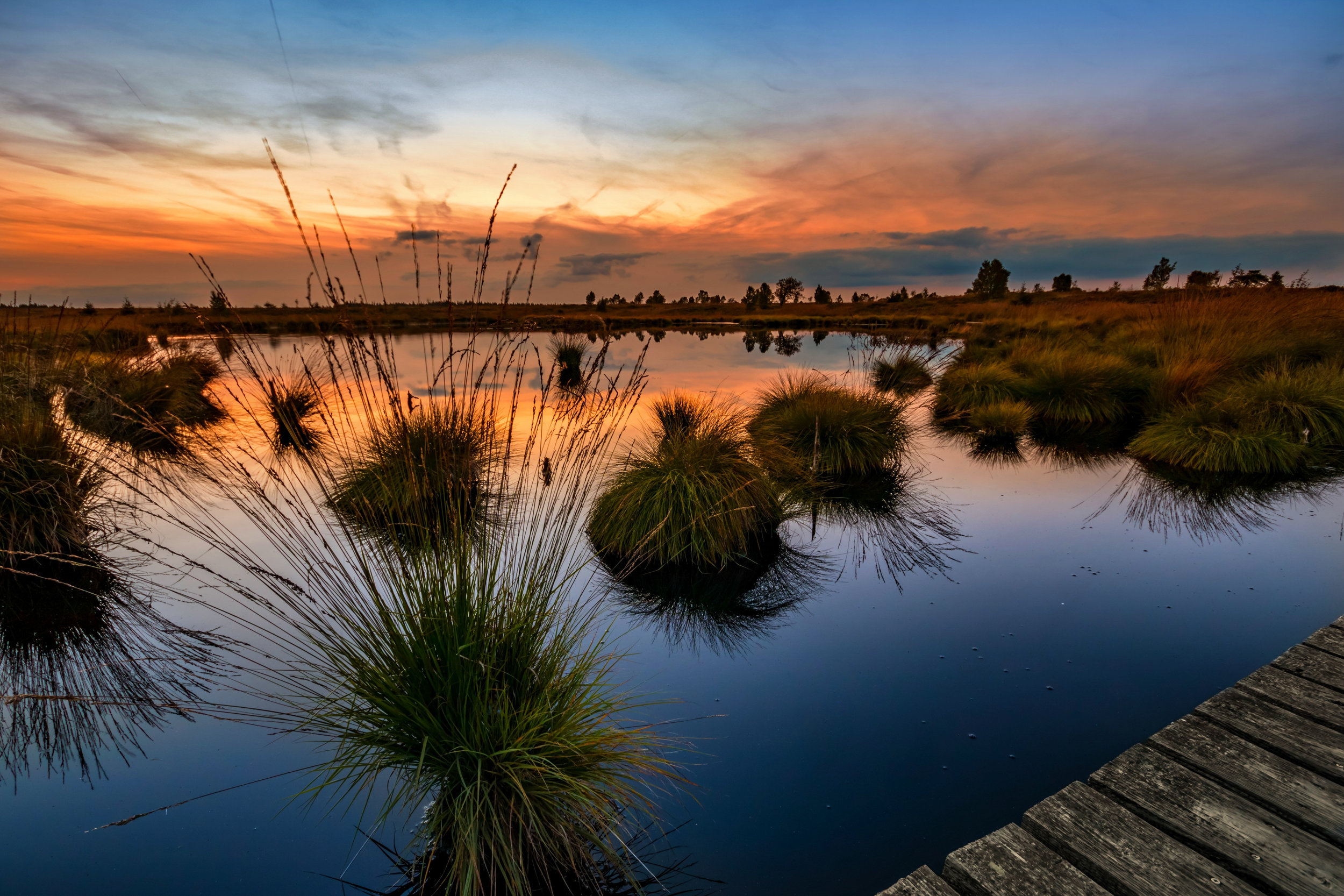 Foto Wende Dutch Beachsocks-7.jpg
