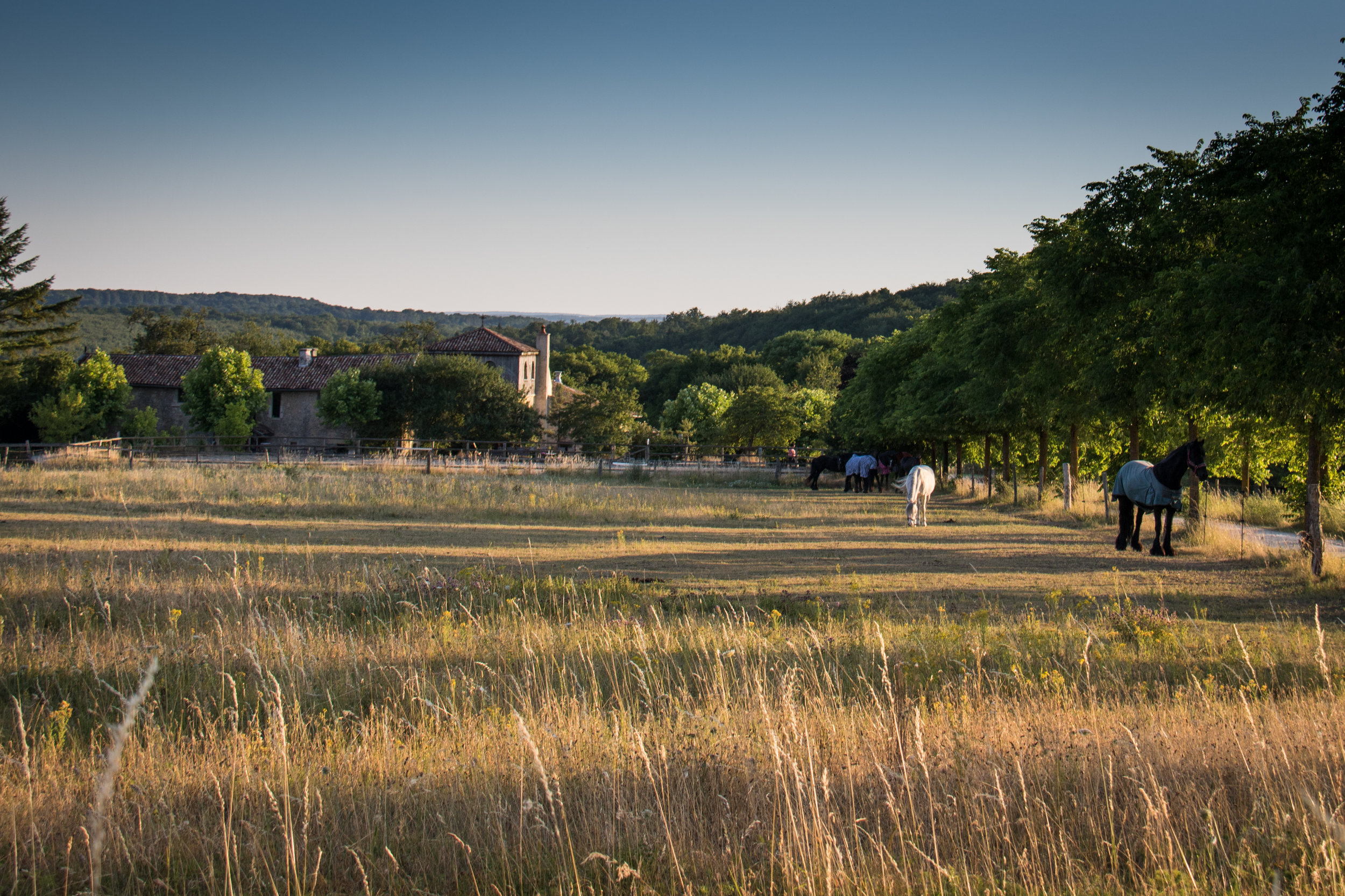 The lovely Domaine