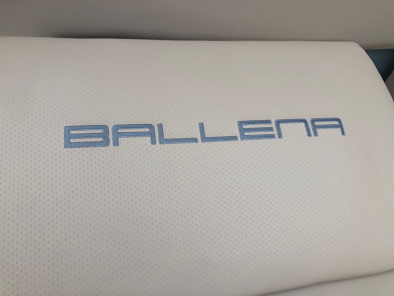 Ballena_1.jpg