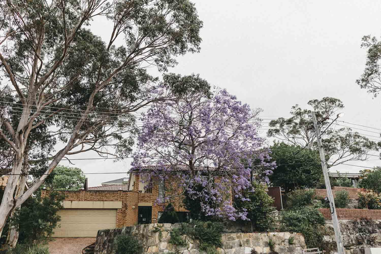 Sydney Wedding Photography | Wazza Studio 12.jpg