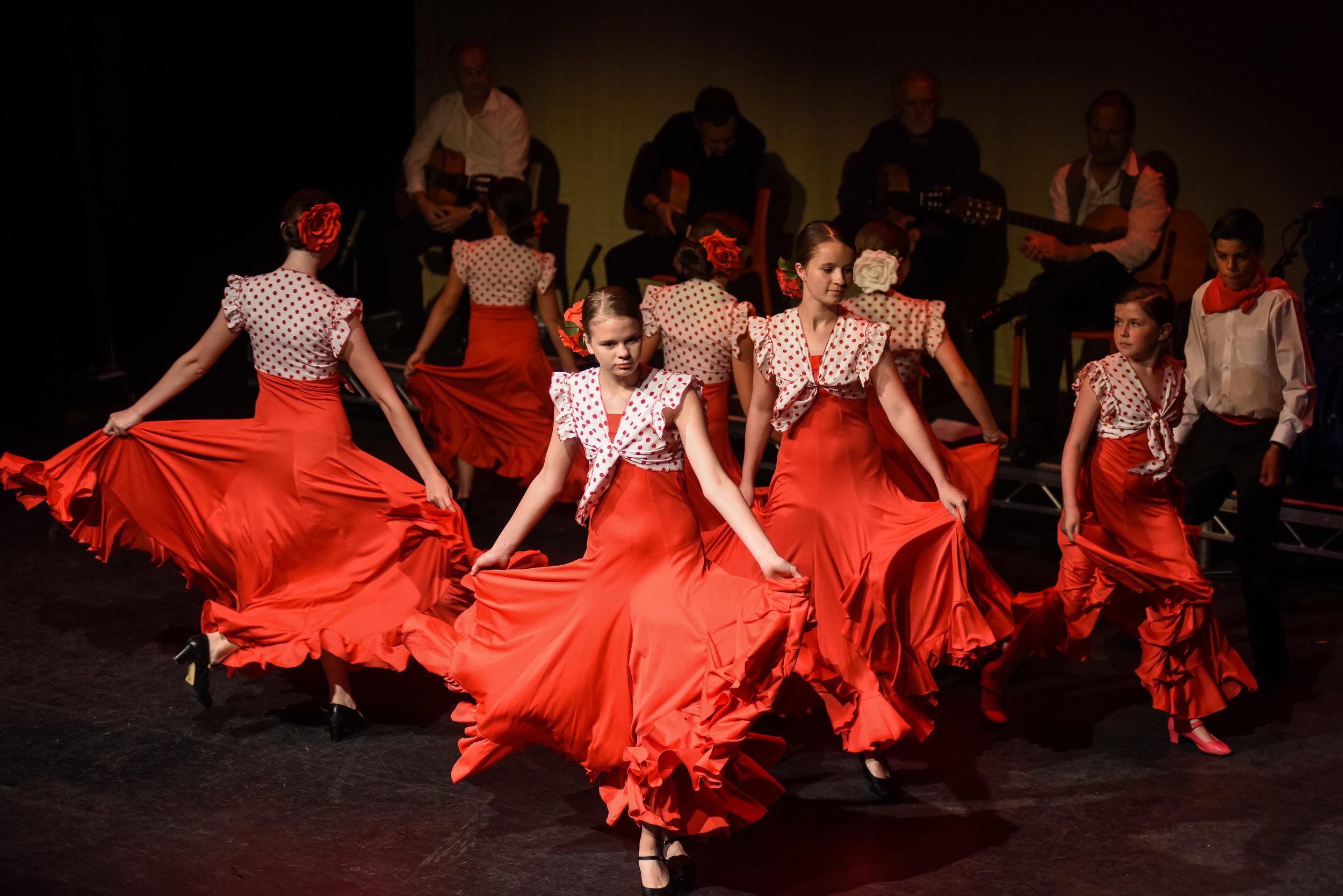 Camino Del Flamenco