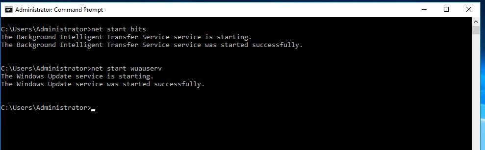 06 Start Services.JPG