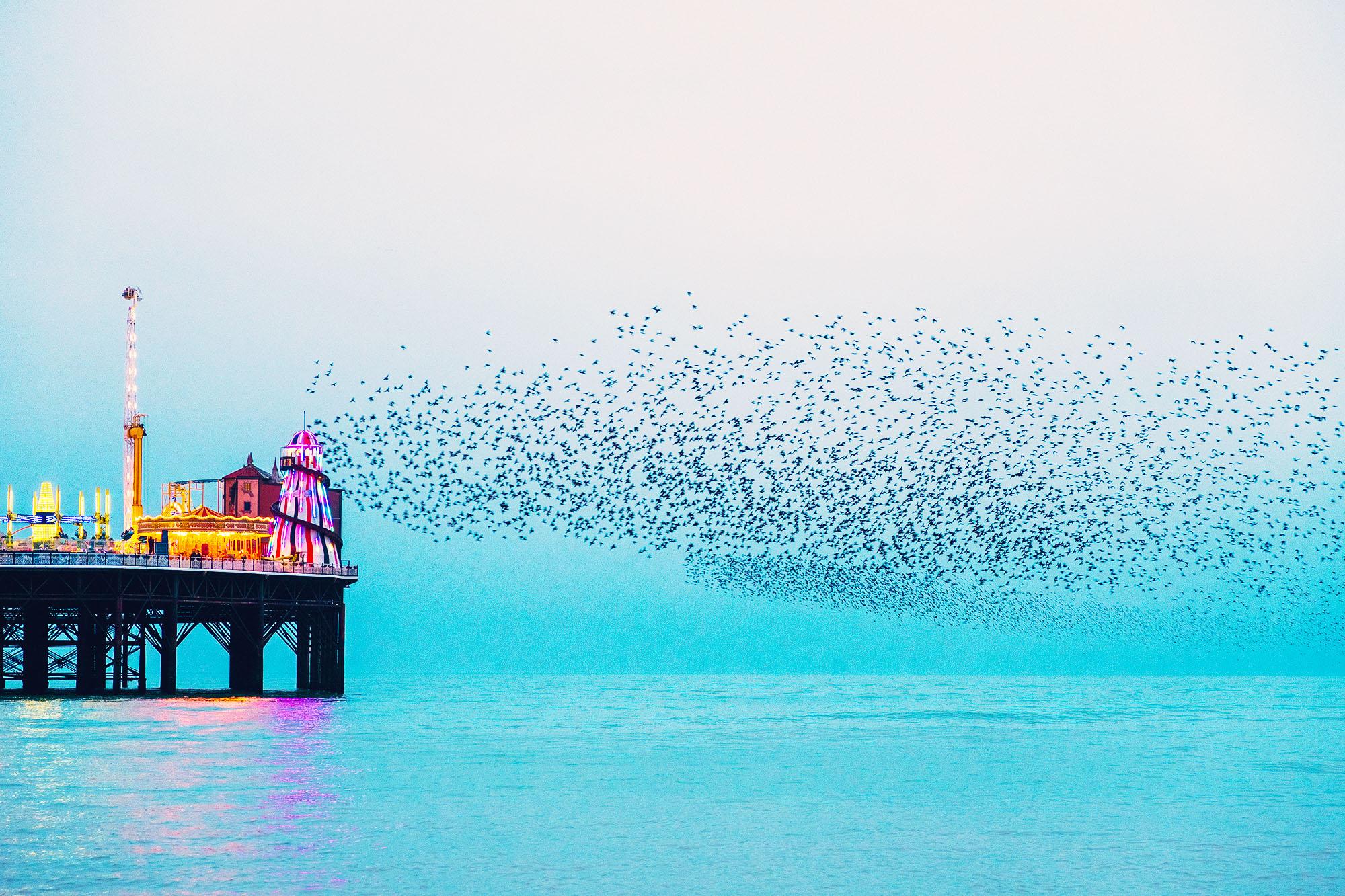 Brighton Pier, Brighton, East Sussex