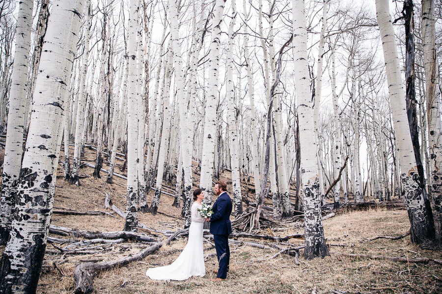 Abie Livesay Photography - Telluride Wedding Elopement Photographer - Field Elopement-266.jpg