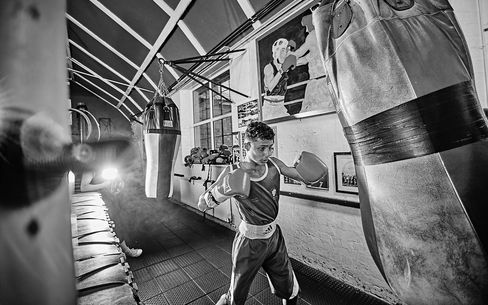 boxer_3018s.jpg