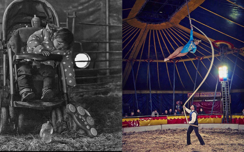 circus_11532.jpg