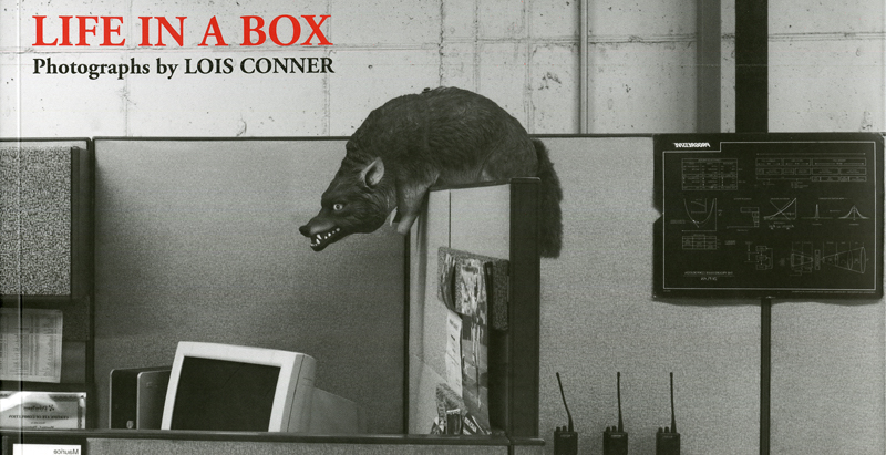 Life In A Box, 2010