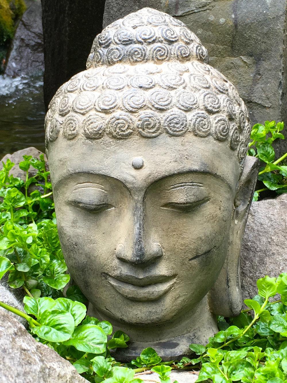 Buddha Heads Mia Dovi