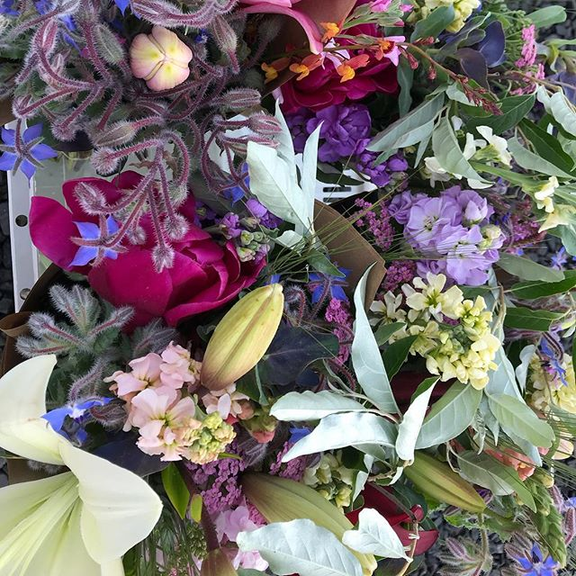 Loved this color palette from the market bouquets yesterday.