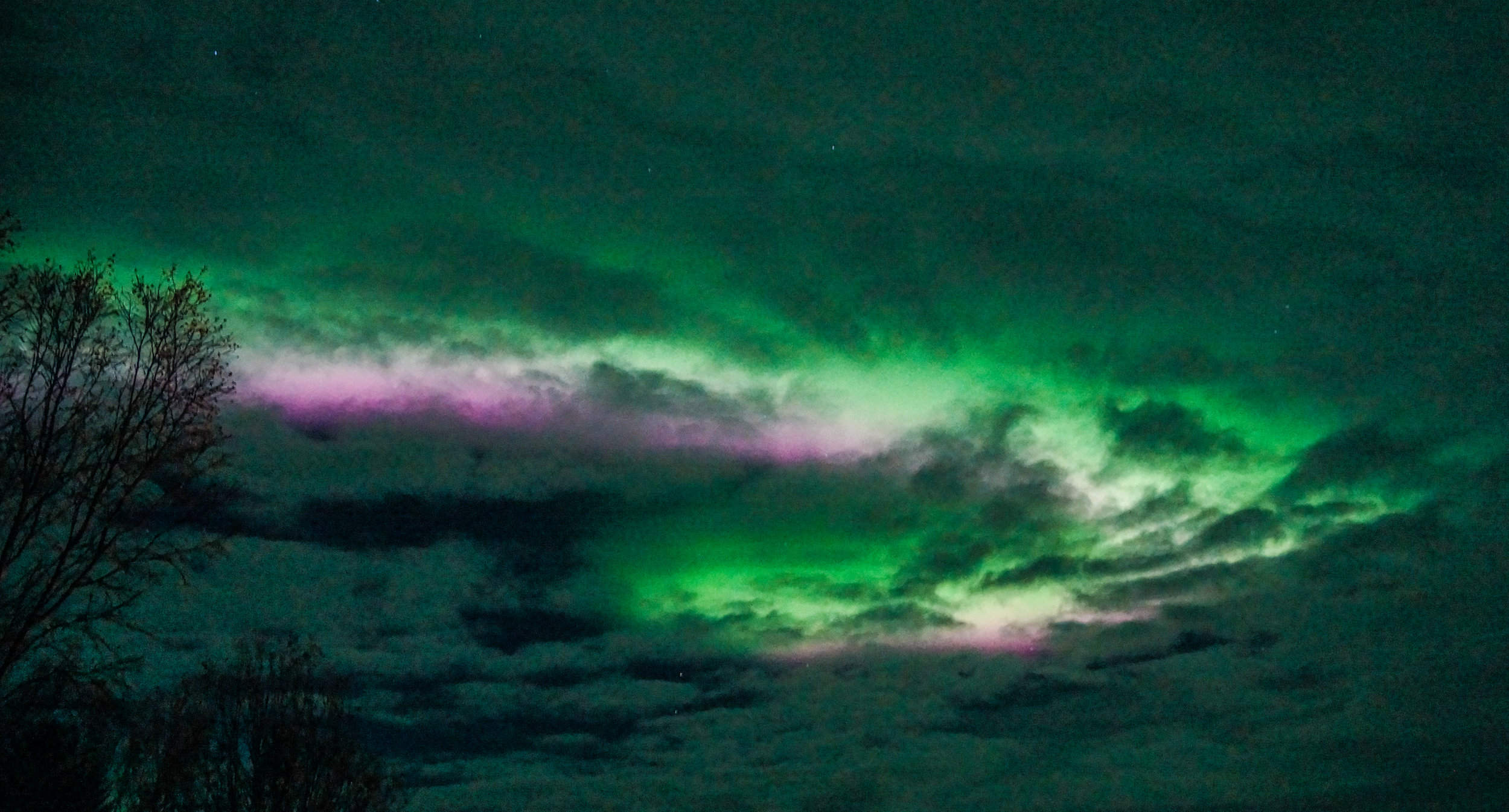 northern lights 5.jpg