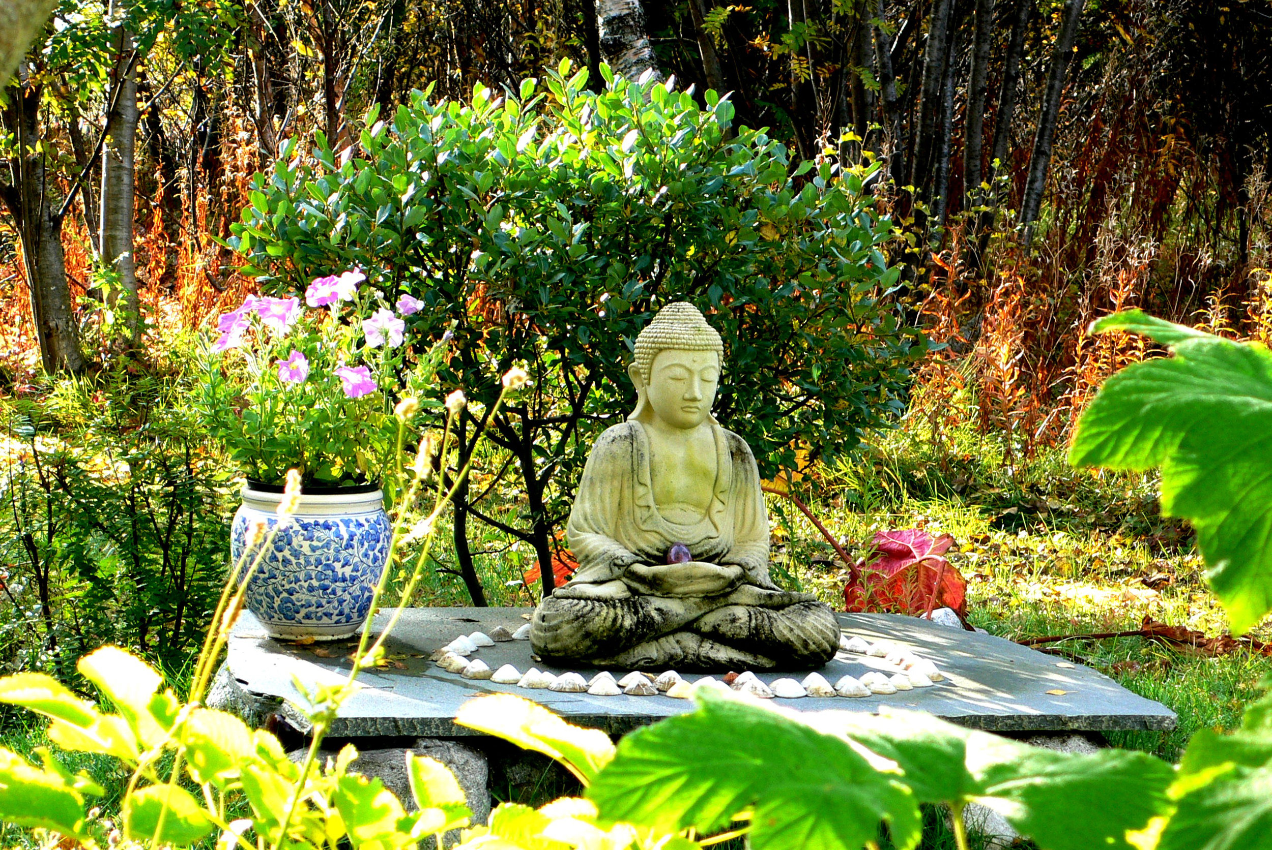 garden-9-1.jpg