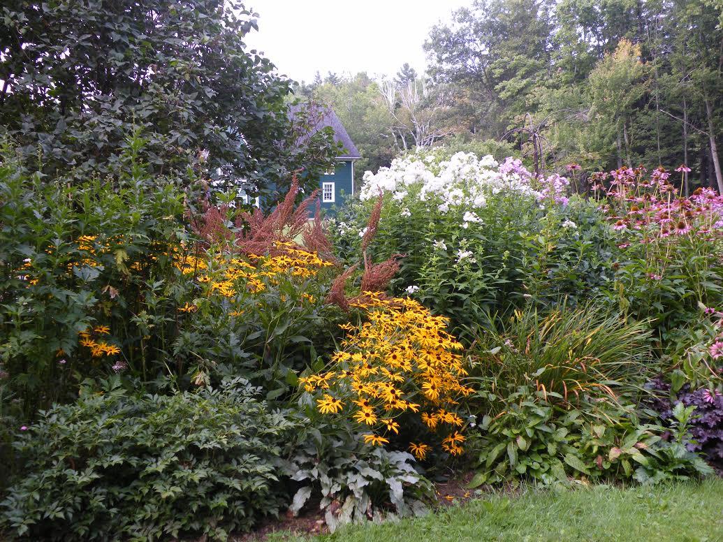 flowerbed3.jpg