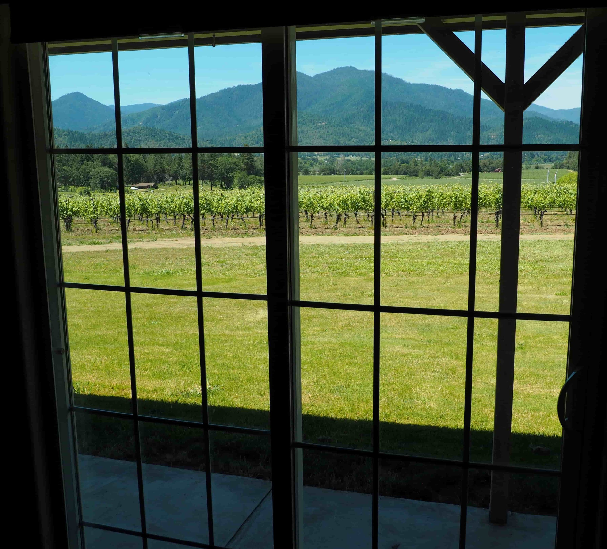 view from master bedroom Vineyard House.jpg