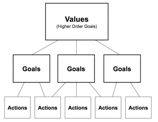 Hierarchy of values, goals, and actions