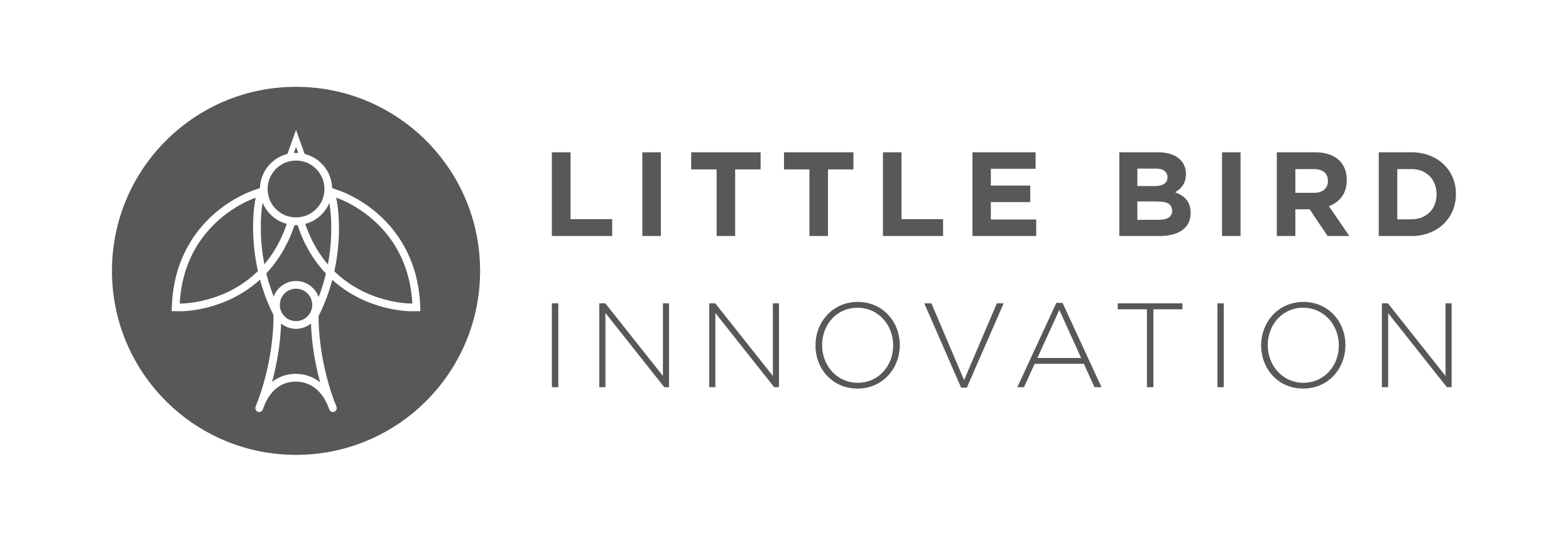 Little Bird Innovation  is a Memphis-based research, strategy and design firm focused on projects that drive economic development, social impact and civic innovation. We collaborate with others to tackle challenges that inspire us. From developing plans to support food entrepreneurship amongst immigrants and refugees to helping the Memphis public library system redefine its value and role in the lives of its residents, we bring a people-centered approach to solving complex problems.    More information at  Little Bird Innovation .