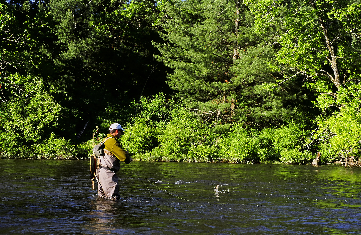 Guided Trips — Housatonic River Outfitters