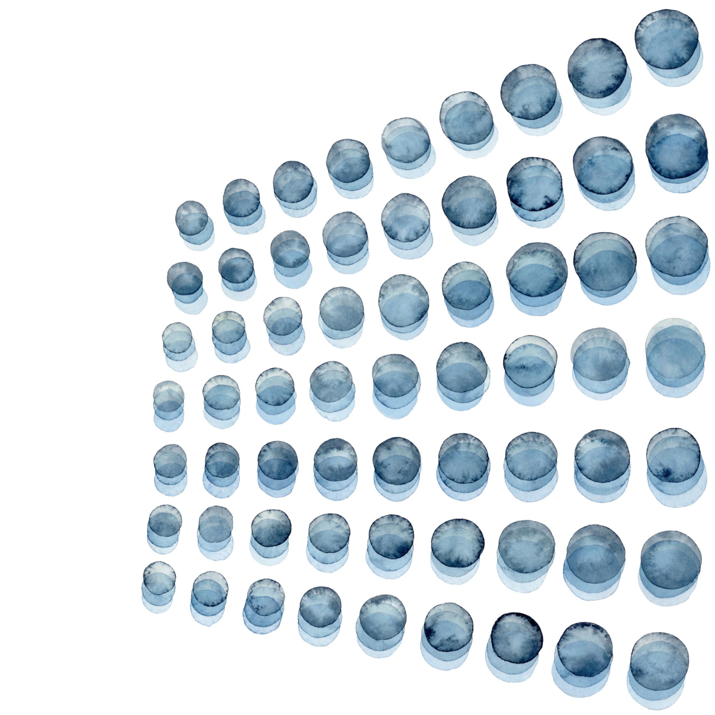 SPRAY IN BLUE - Jen Lashek