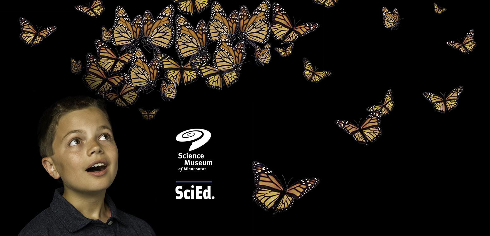 SMM_Connor_butterflies_for_postcard.jpg