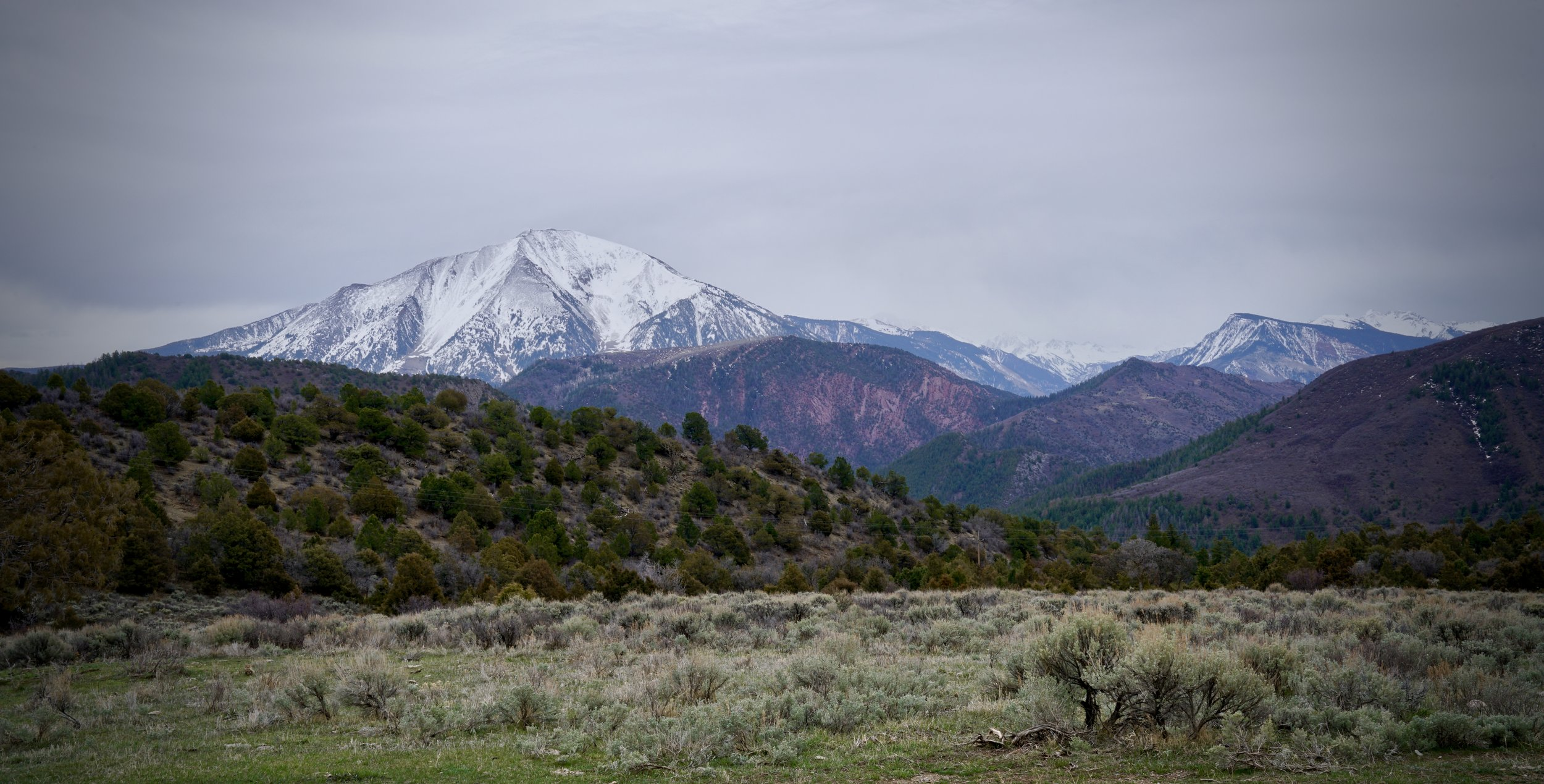 Mt Sopris from Thompson Creek Rd