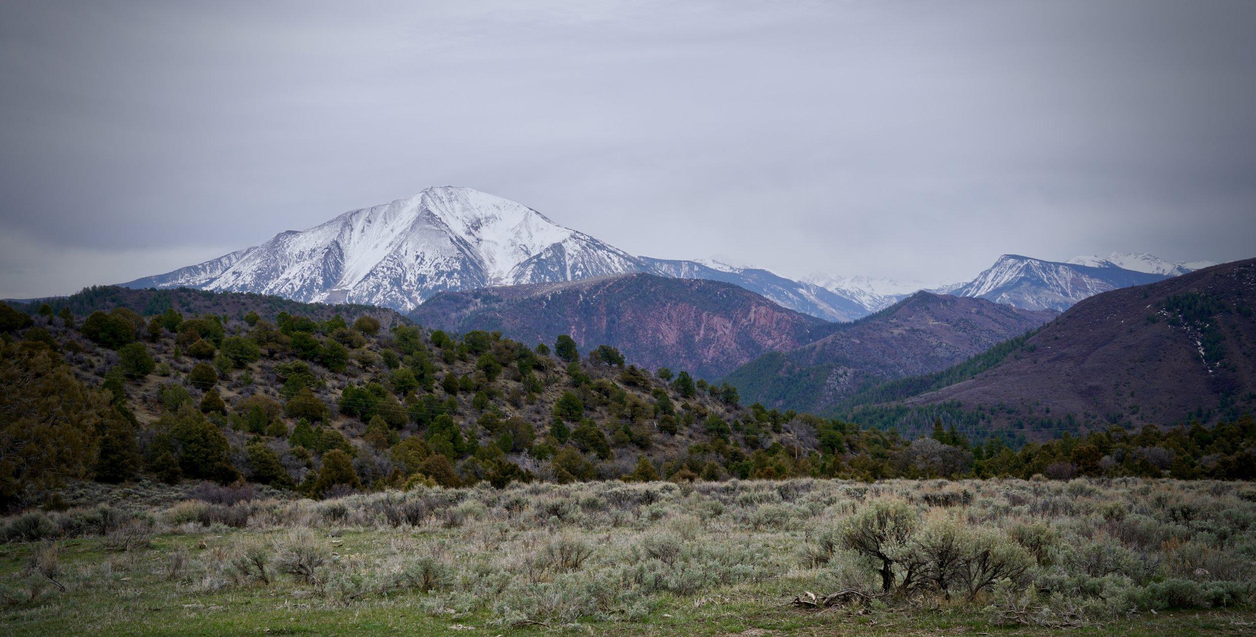 Mt Sopris from Thompson Creek Rd