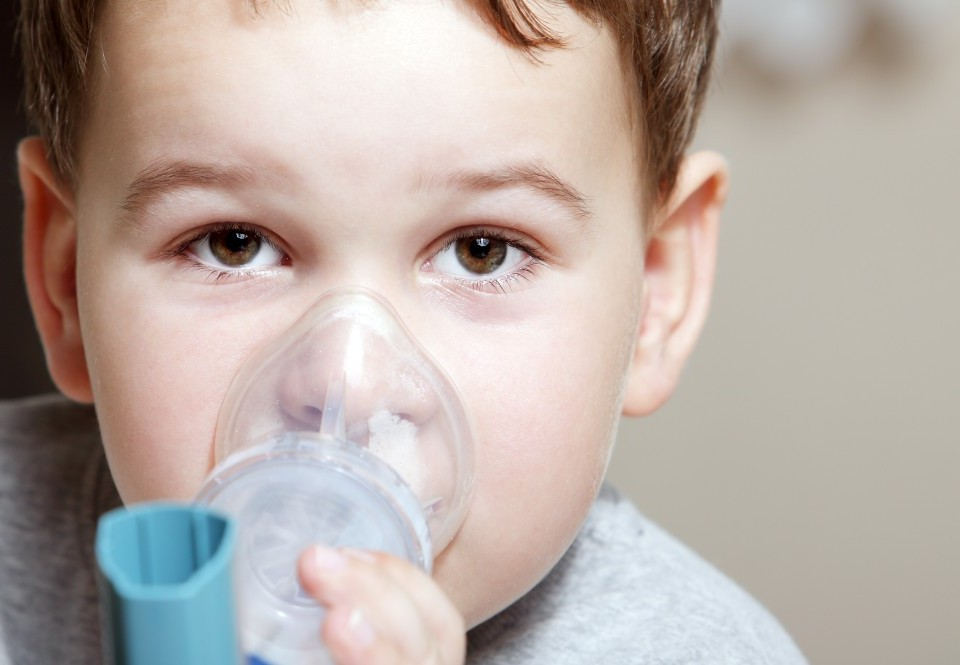 Air pollution during childhood can cause life-long health problems