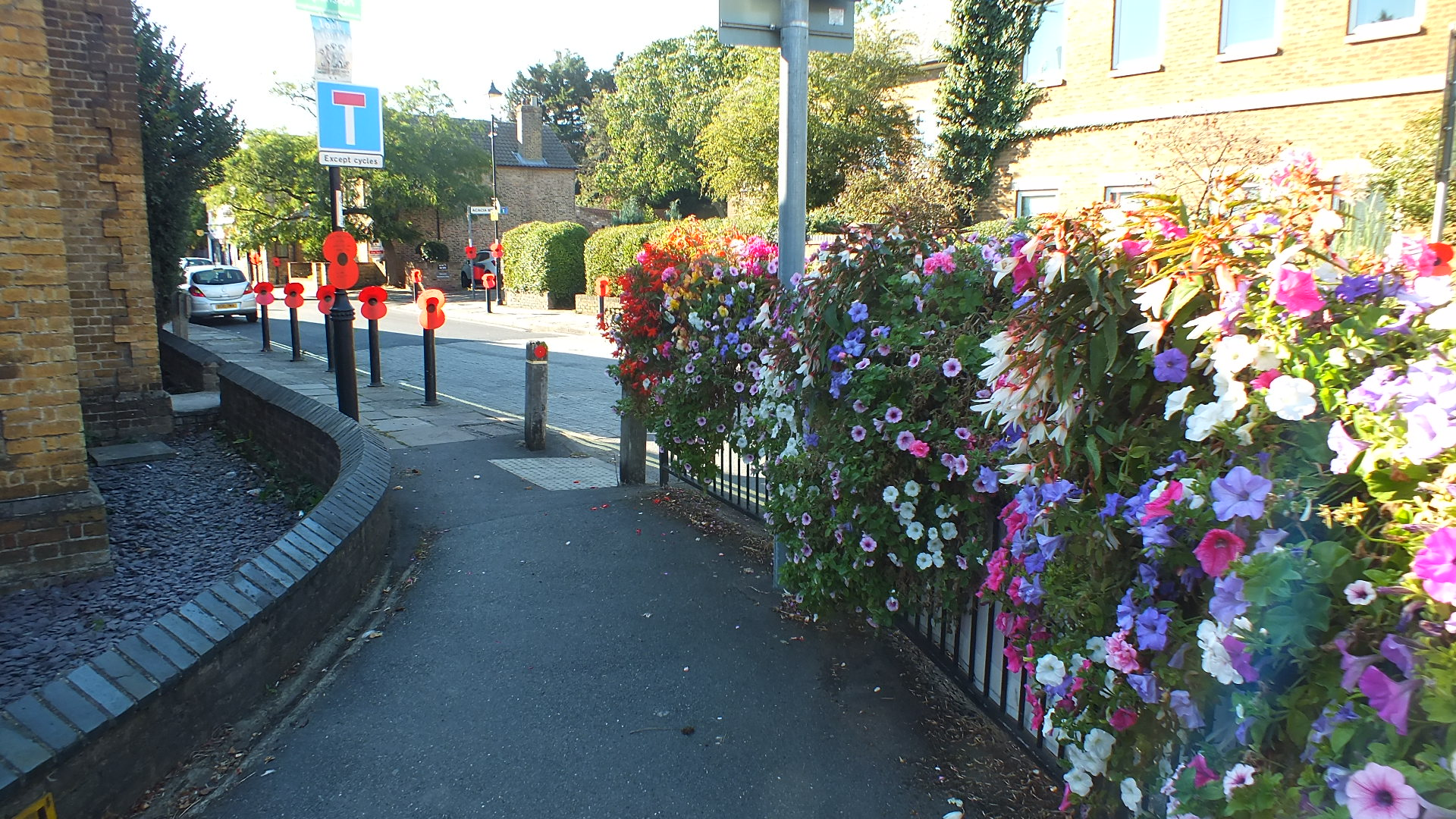 Walking towards the village green takes you past glorious flowers and remembrance poppies