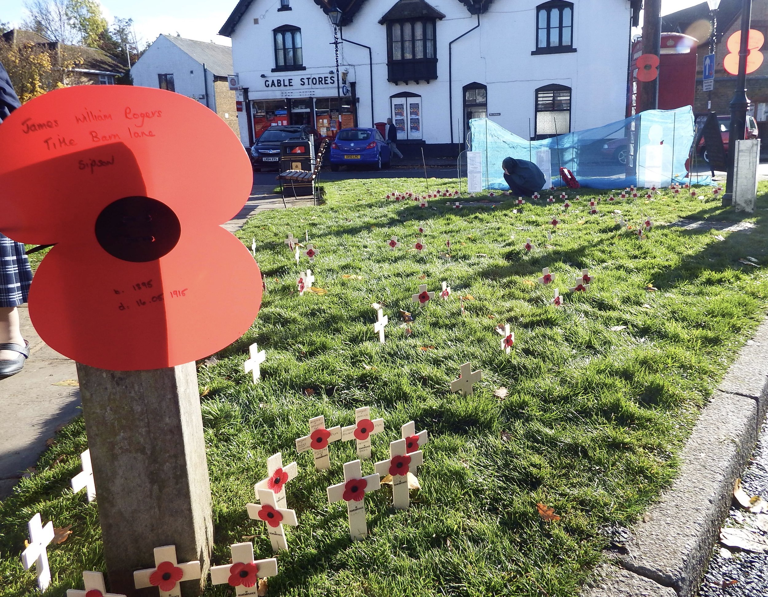 One hundred crosses were planted on the village green in remembrance