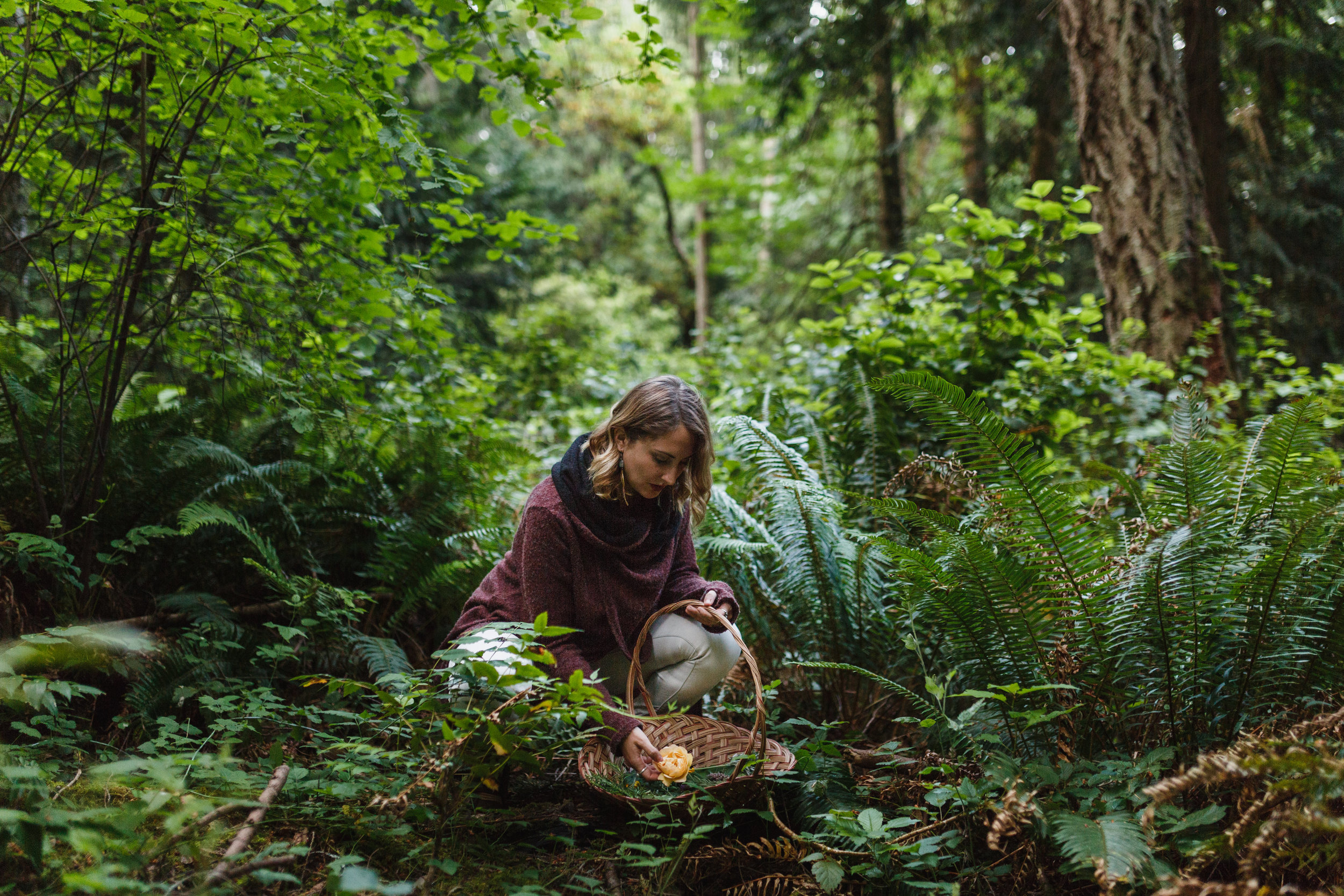 Herbalist in the forest