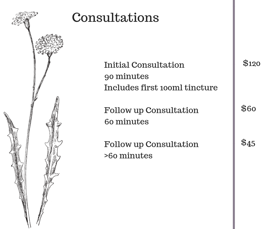 consultation prices