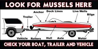 boat_trailer_check.jpg