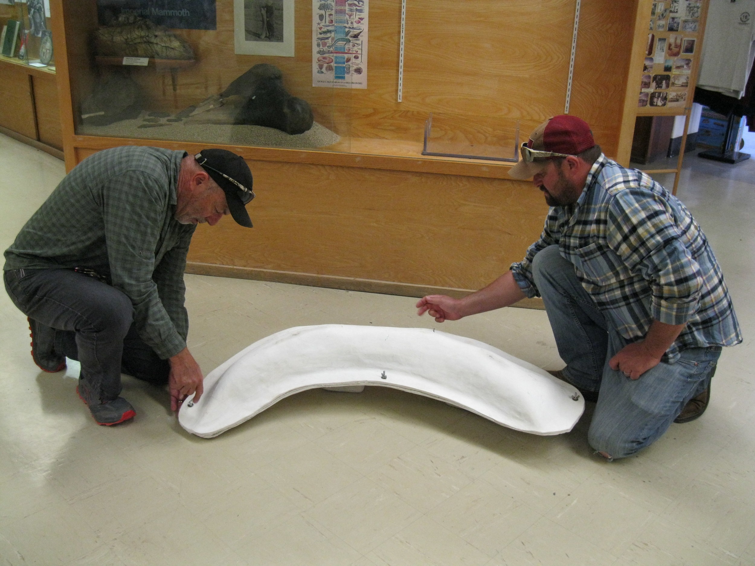 Left, Ray Ramirez, LADWP Environmental Specialist, LADWP, Owens Lake, prepares to take the proboscidean tusk out of its protective case at the Eastern California Museum. Photo courtesy Eastern California Museum