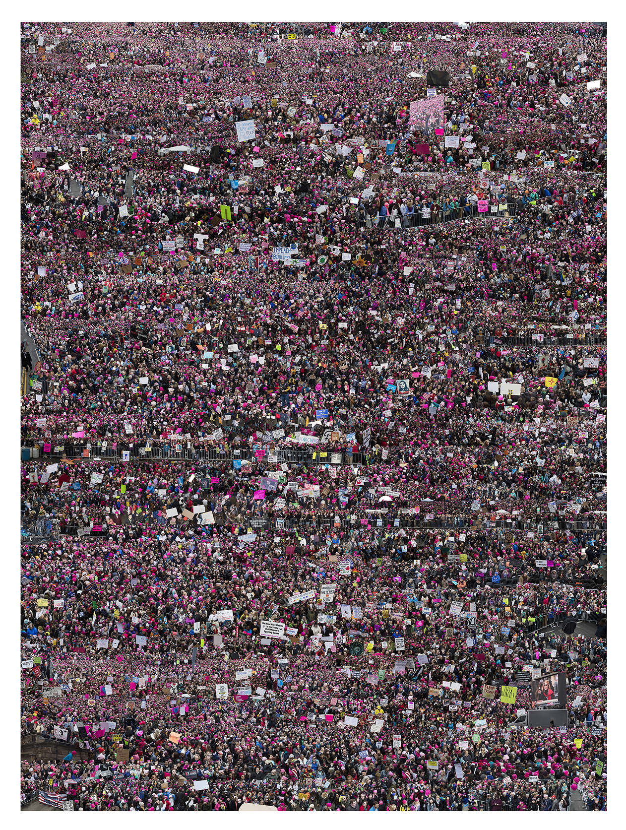 Untitled (Women's March), 2017