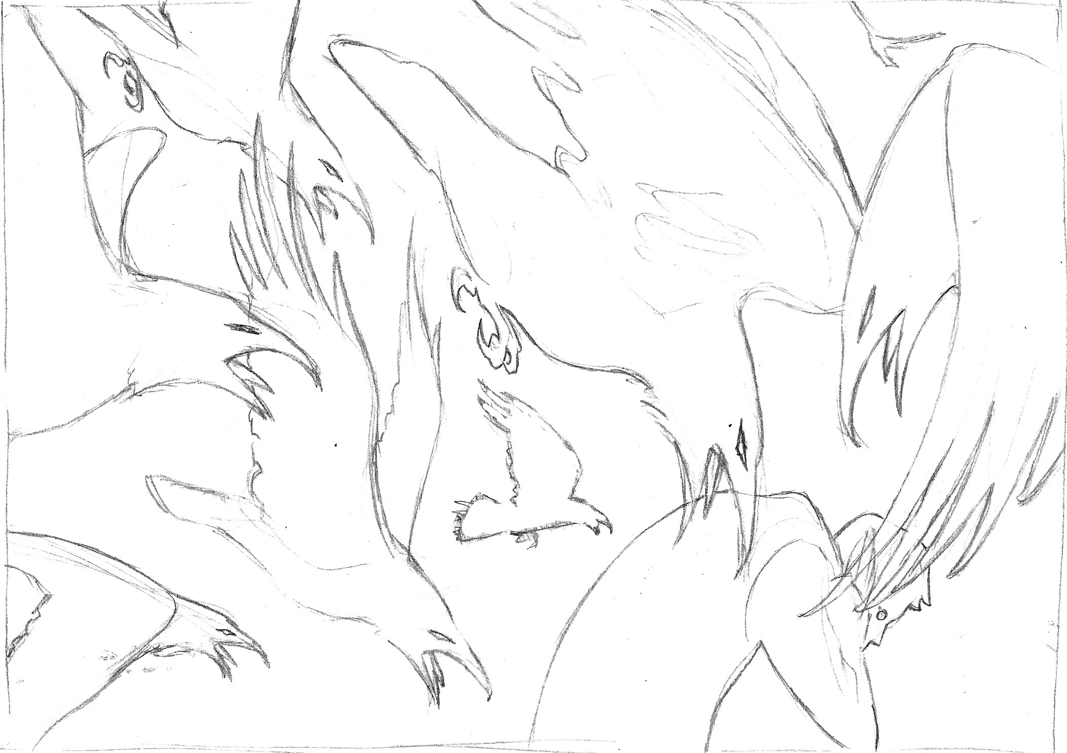 Scanning the drawing into Photoshop, I block in the shapes to better realize the final look.