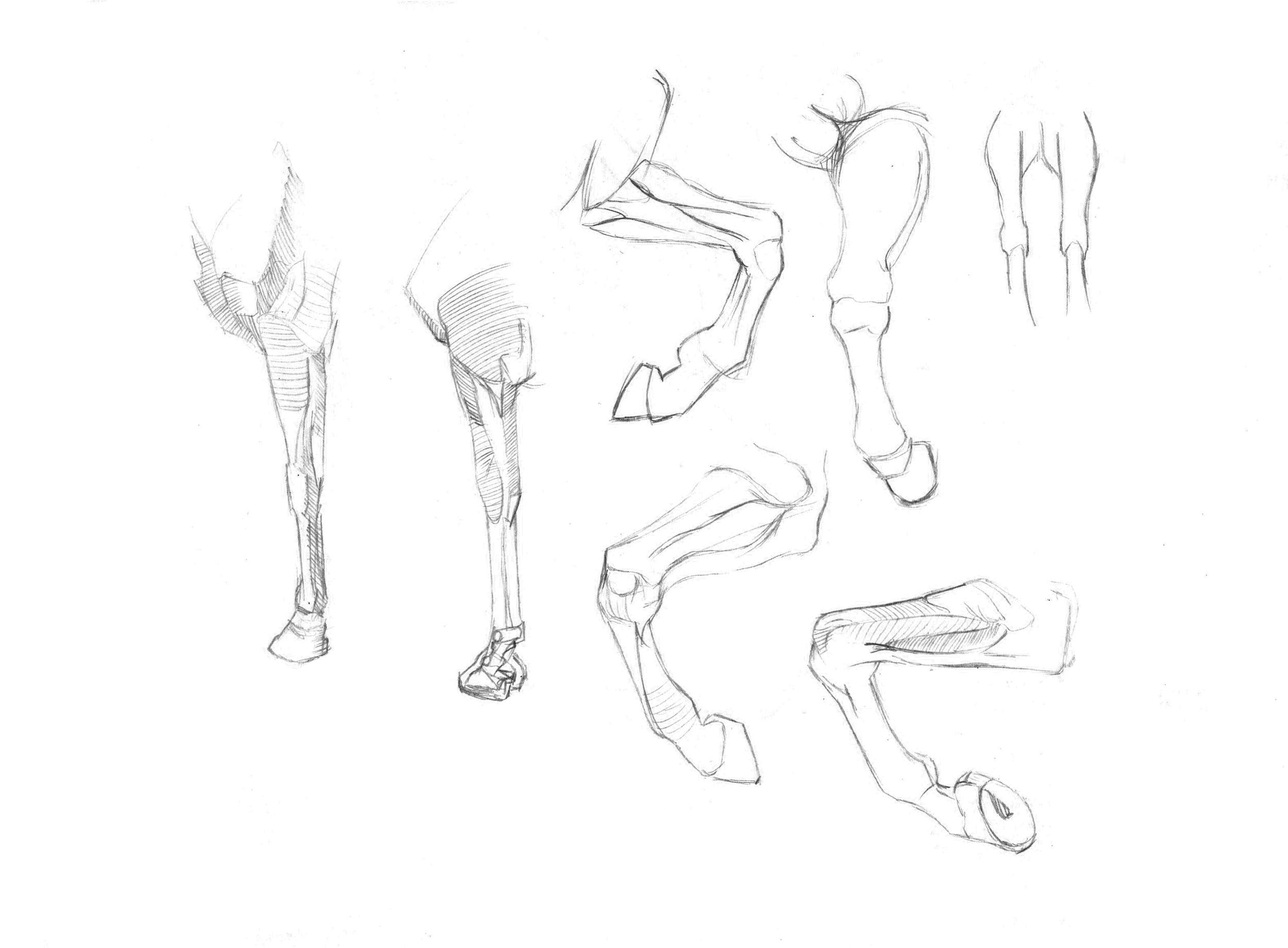 drawing10.jpg