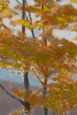 landscape2colorstudy.jpg