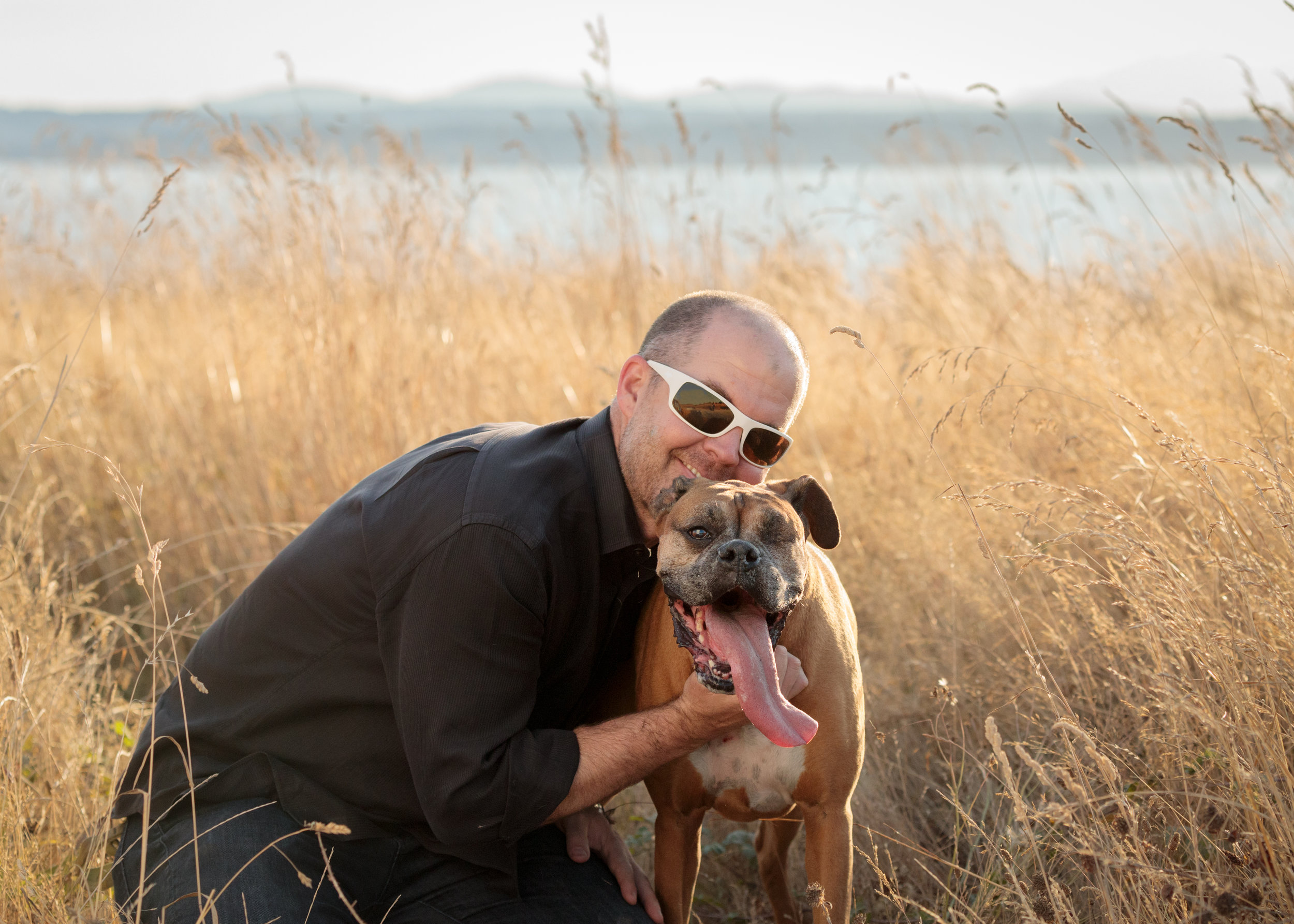Seattle Pet Photography, Boxer