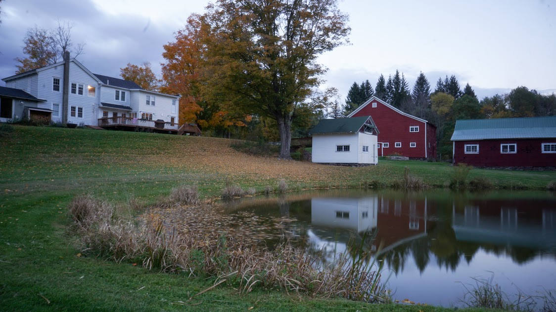 house and pond.jpg