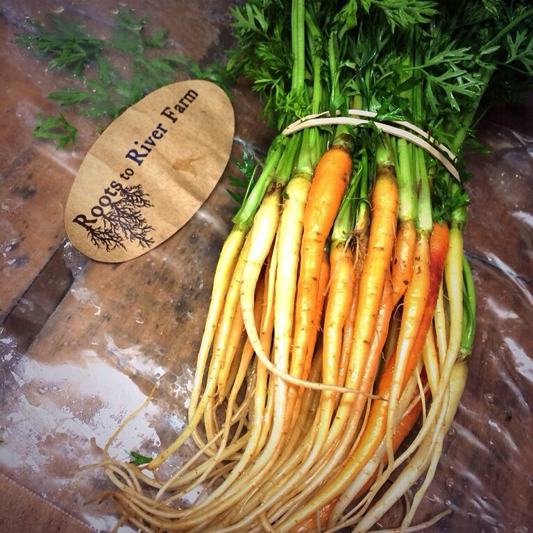 Roots to River Farm Micro Carrot