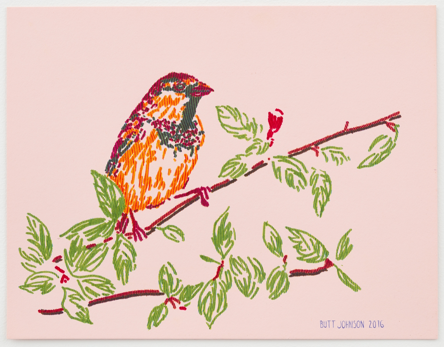 Untitled (Sparrow)