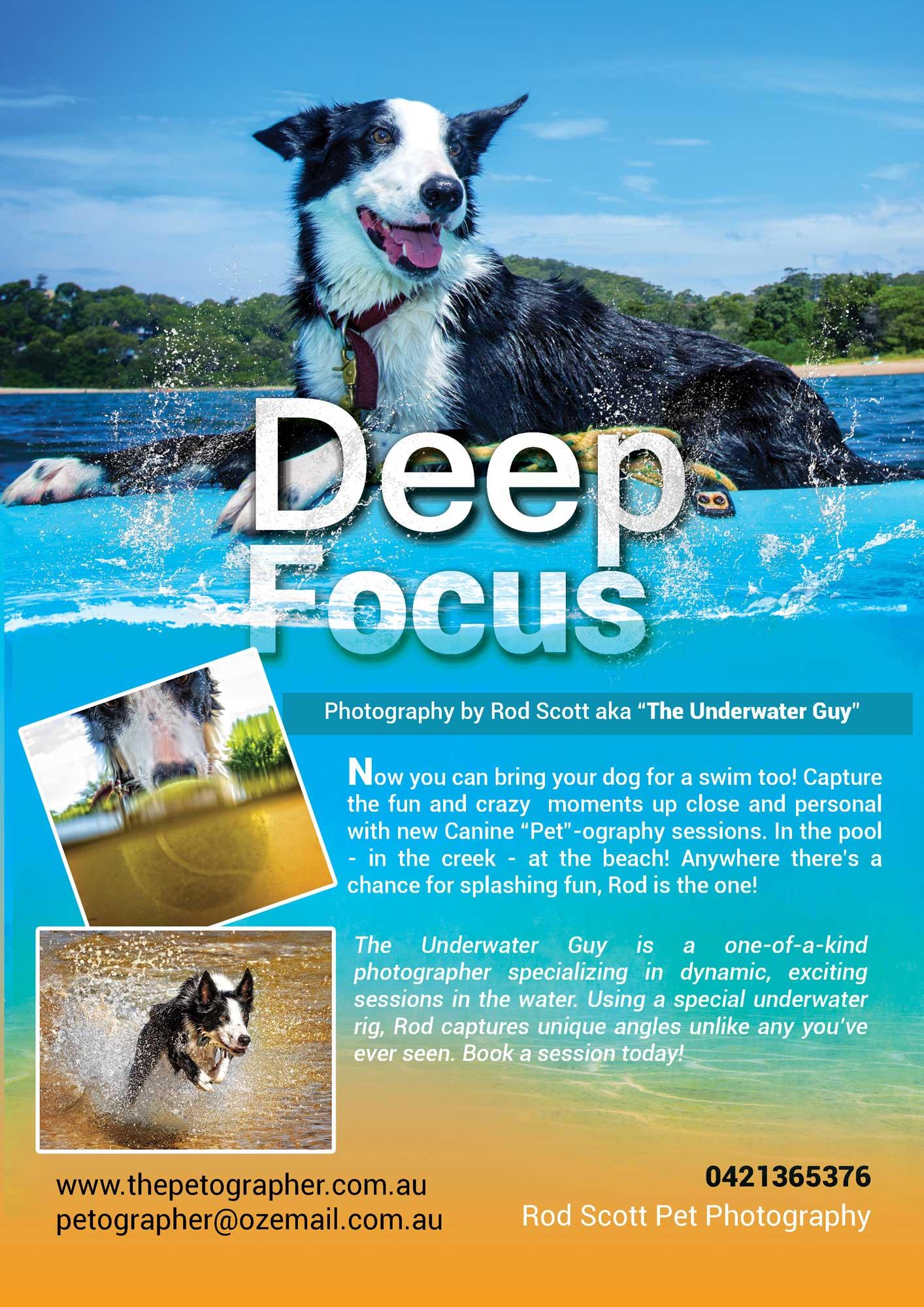 Deep_Focus_Web_use