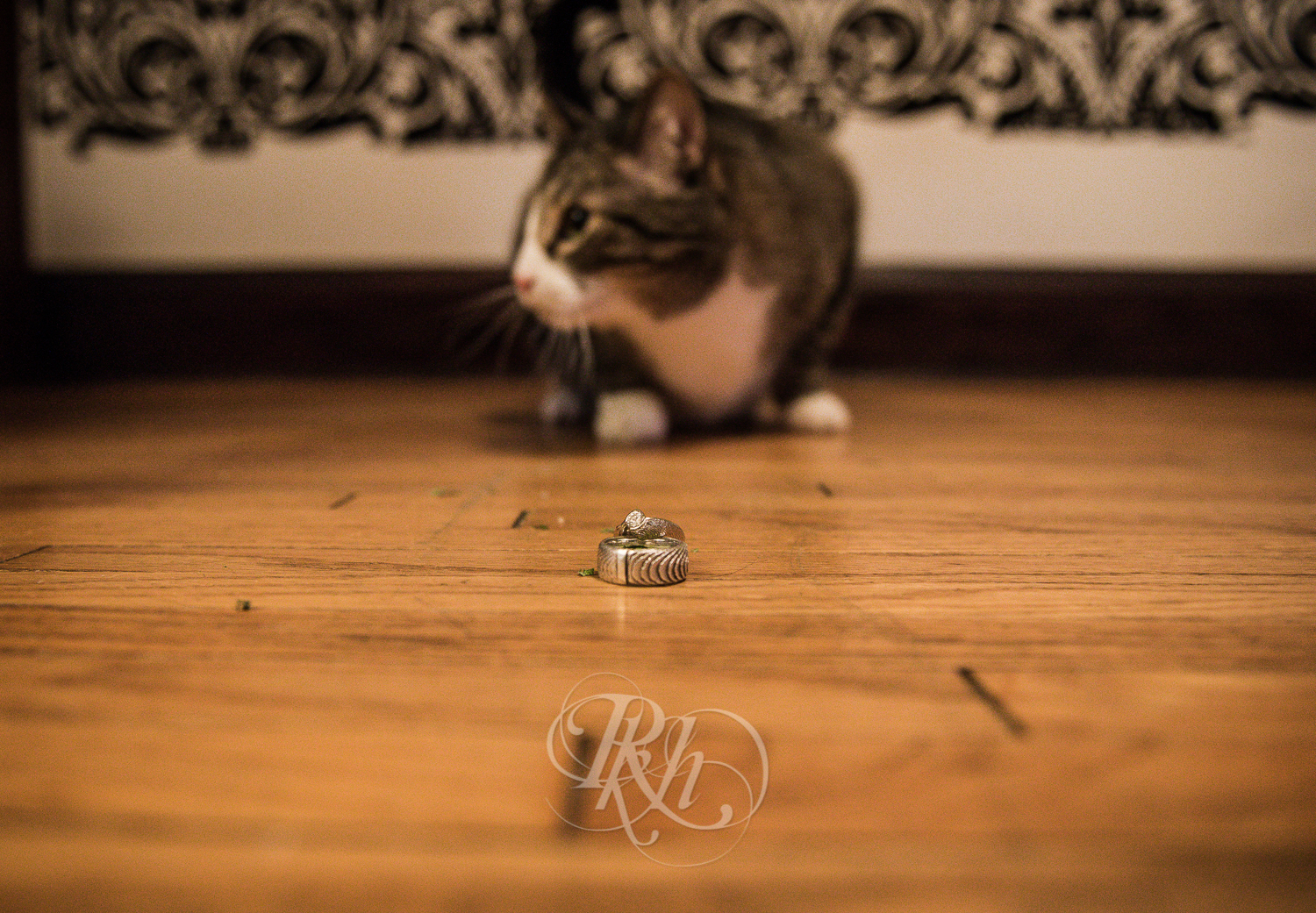 Engaged- Andria & Kyle - RKH Images - Minneapolis Wedding Photography-6