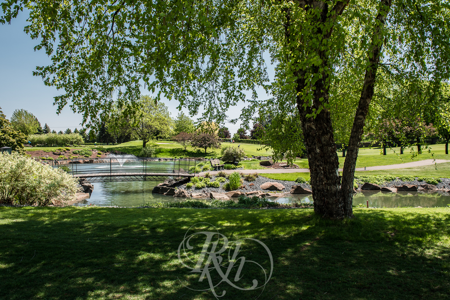 Blog - Whitney & Brent - Minnesota Wedding Photographer - RKH Images - Blog-2.jpg