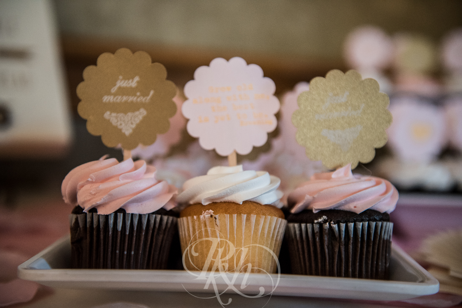 Blog - Whitney & Brent - Minnesota Wedding Photographer - RKH Images - Blog-10.jpg