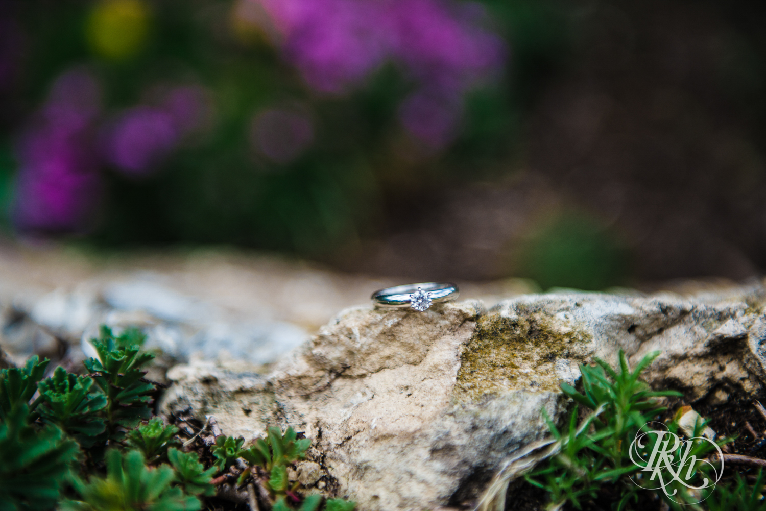 Tess and Eric - Lyndale Rose Garden - Minnesota Engagement Photography - RKH Images  (6 of 12).jpg