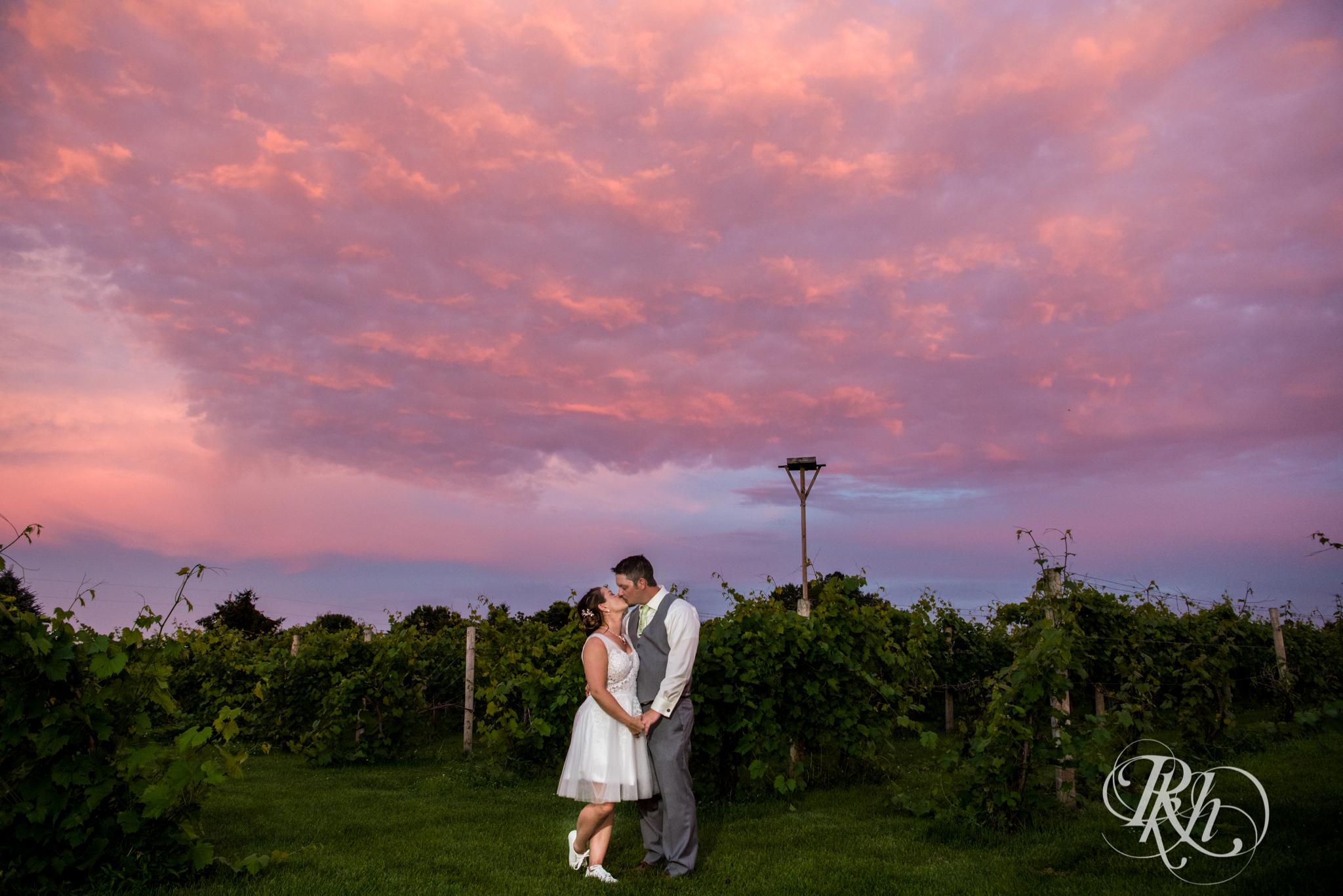 Ally & Nick - Minnesota Wedding Photography - Next Chapter Winery - RKH Images - Blog (54 of 57).jpg