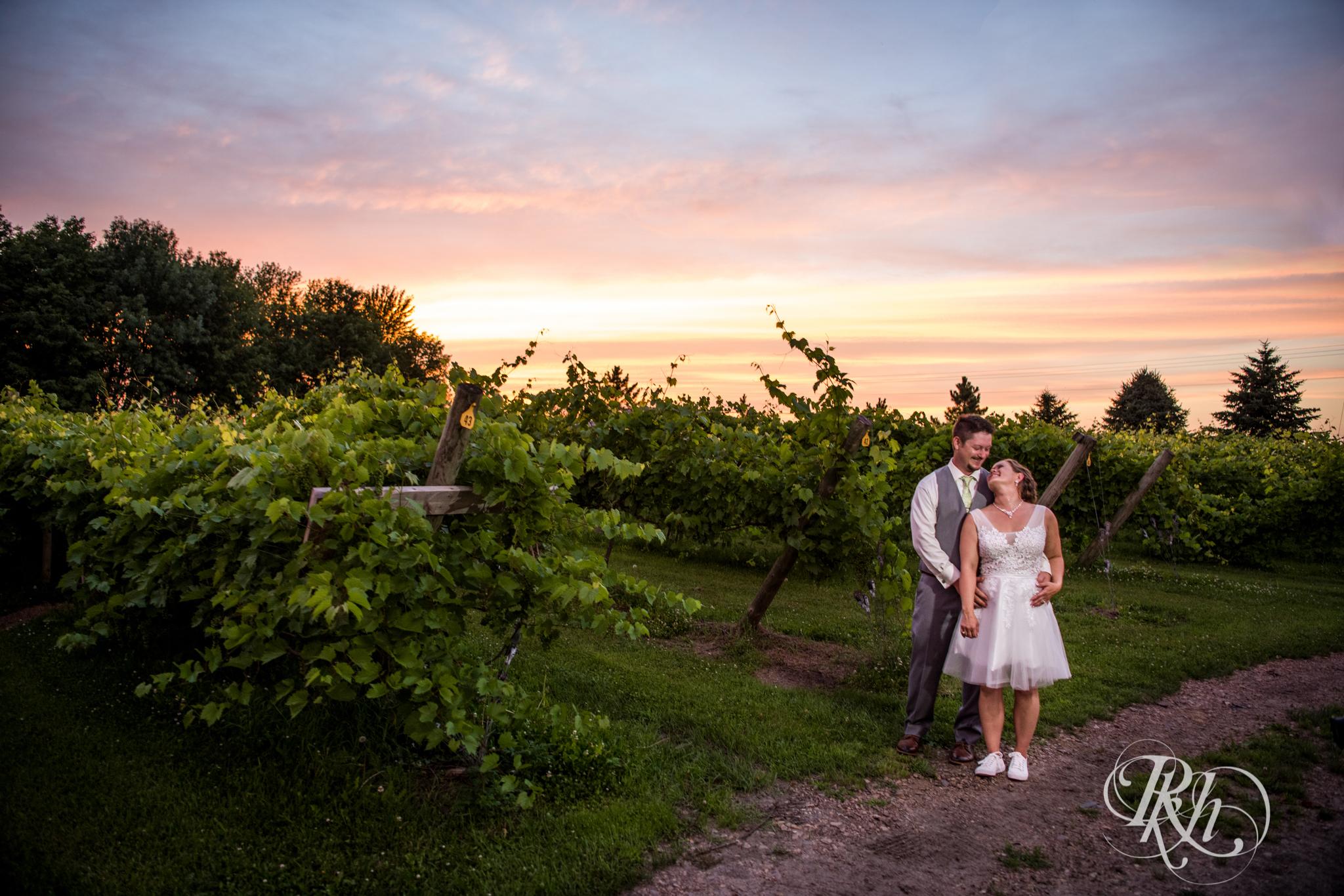 Ally & Nick - Minnesota Wedding Photography - Next Chapter Winery - RKH Images - Blog (55 of 57).jpg