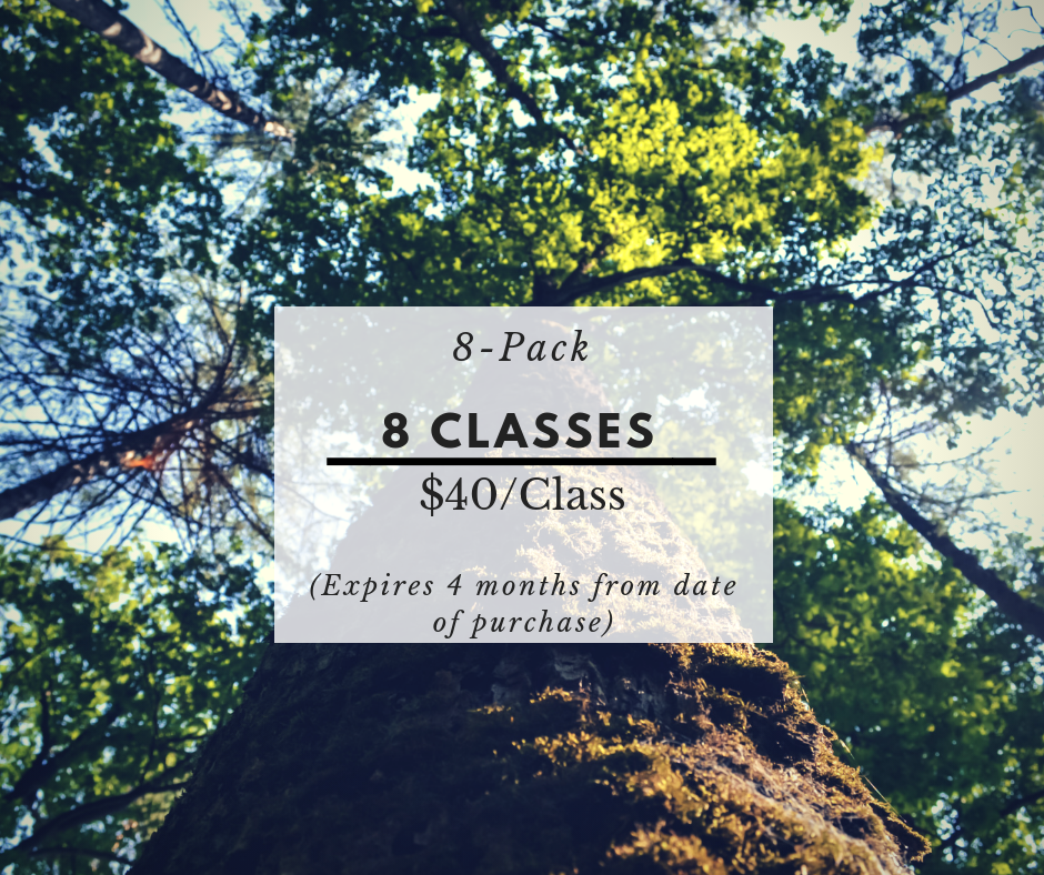 $320 -  The 8 class pack offers the flexibility of taking several classes a week or spreading them out over a couple of months. This is for the serious students who like a variety of classes.    ** Includes:   Access to videos of exercises/1- 20min strategy phone call/1 - 30min pivate lesson