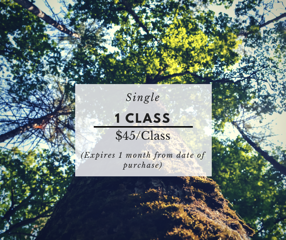 $45 -  This one class pass is ideal if you're just looking to brush up and get some corrections on your form.
